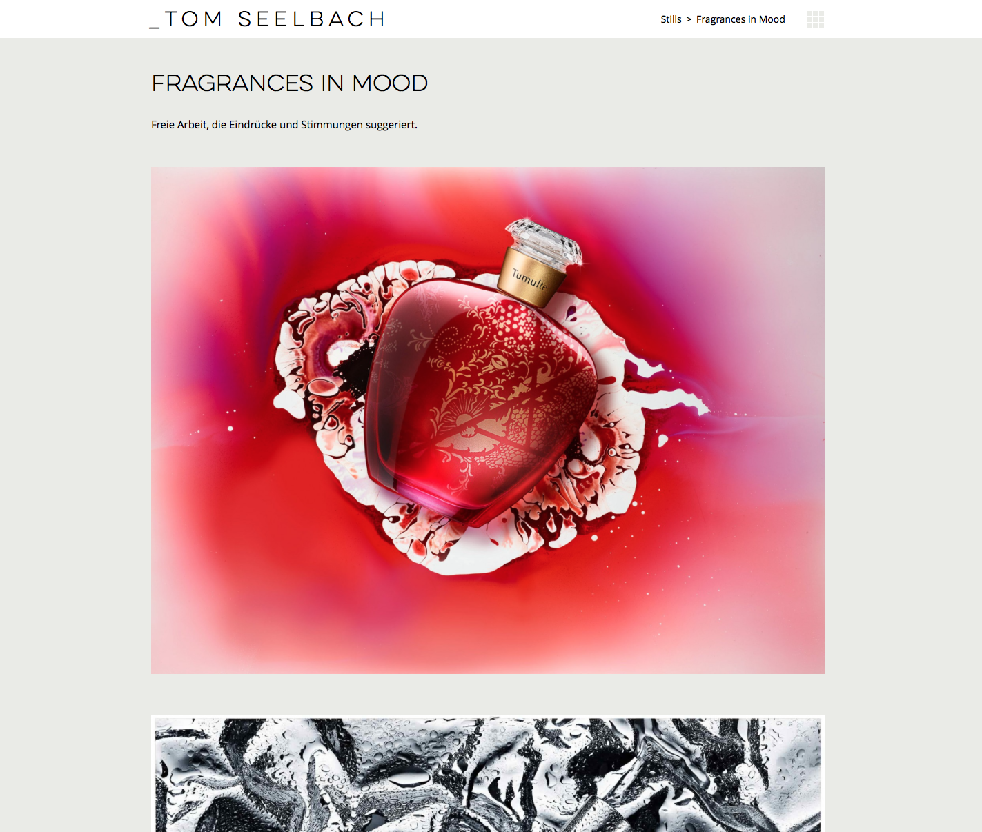 Website-Tom-Seelbach